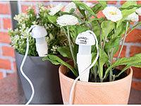 topfpflanzen bew sserungs system mit tonspitze und. Black Bedroom Furniture Sets. Home Design Ideas