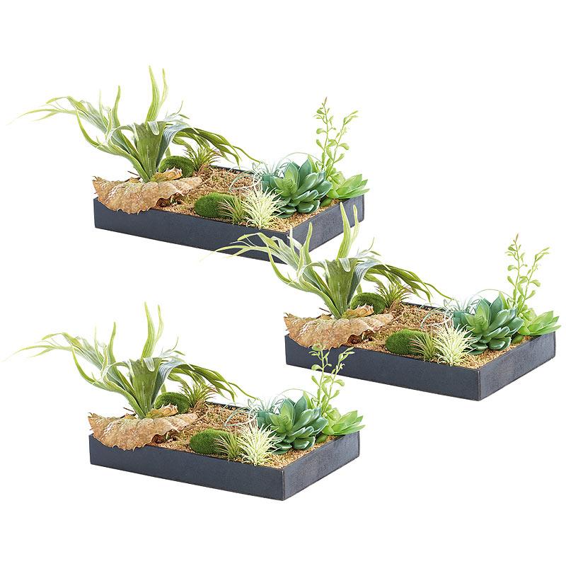 Wandbild vertikaler wandgarten lisa mit deko pflanzen 3er set bild pflanzen ebay - Vertikaler wandgarten ...